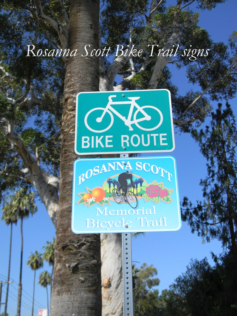 Rosanna Scott bike trail signs