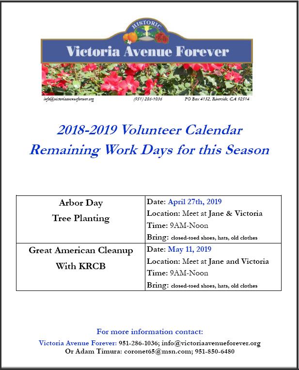 Volunteer Calendar 18-19